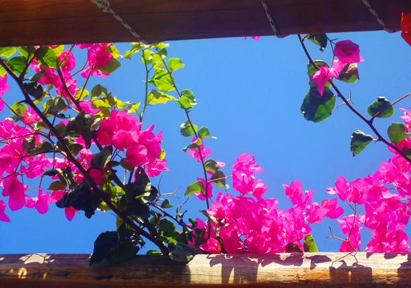 greek paradise_02-a