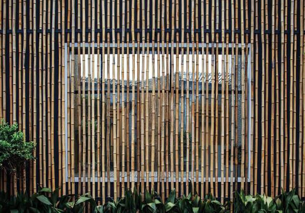 bamboo_04
